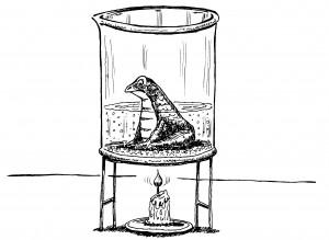 frog-heat-beaker